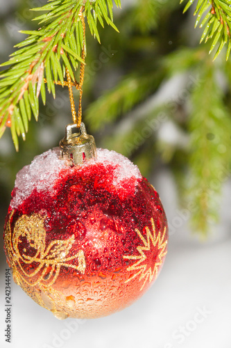Christmas tree toy weighs on the tree at night in winter - 242344494