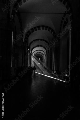 Basilica di S. Ambrogio, Milano (Lombardia) - 242359838