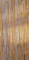bamboo surface pattern  © oreans