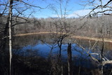 Baker's Pond in Holly Springs National Forest Mississippi - 242373613