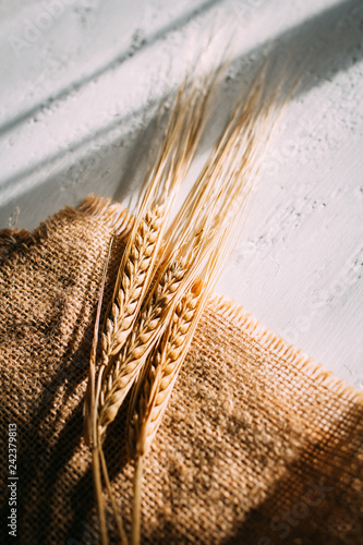 Leinwanddruck Bild Cut the wheat ears lying on a background of burlap