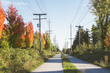 View of the Arubutus Greenway in Vancouver in the fall;  Unusual absence of people on the Arbutus Greenway