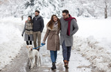 Couple walking dog in park on snow - 242381034