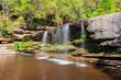 Cachoeira - 242387852