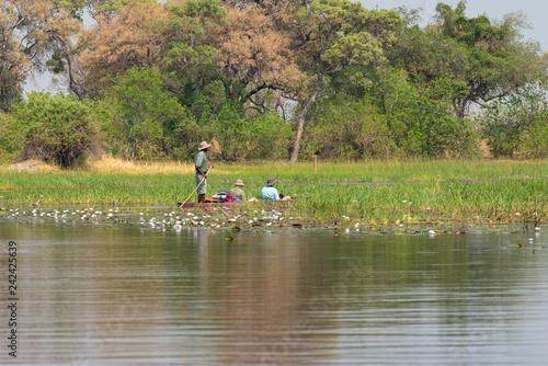 Poster Touristen werden auf einem Mokoro durch das Okavango Delta gefahren, Botswana