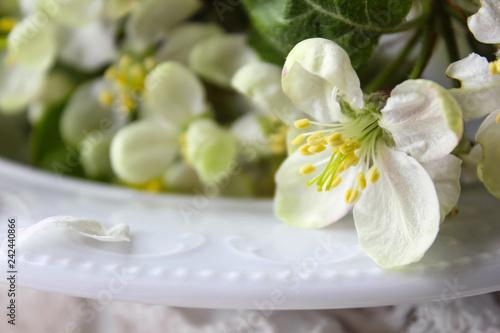 Foto Murales beautiful white flowers apple tree garden