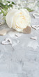Leinwanddruck Bild - Cream rose with hearts