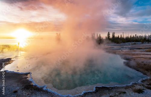 Yellowstone - 242455496