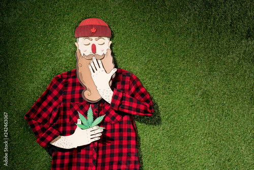 cardboard man in plaid shirt holding cannabis and covering mouth with hand on green grass background, marijuana legalization concept