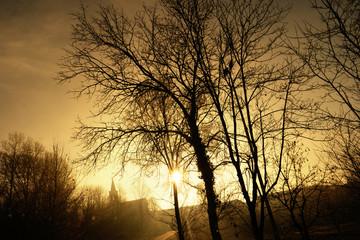 panorama nebbioso invernale al mattino © Giuseppe Porzani