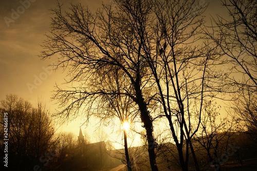 panorama nebbioso invernale al mattino