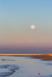 Beautiful morning on the beach - 242472858