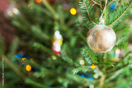 glass ornaments on twigs of live Christmas Tree