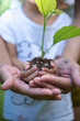 Close up Asian girl and mother's hands holding small plant prepare for plantation.