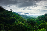 Khao Sok National Park landscape, Thailand - 242498662