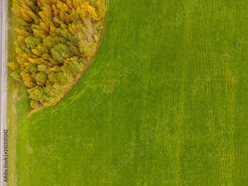 Foto Murales Field from altitude