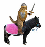The cat knight in a helmet holds a sword and a shield with the coat of arms on a black war horse. White background. - 242516239