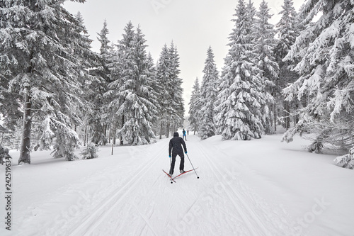 Cross-country skiers on trail after heavy snowfalls, Jakuszyce, Poland.