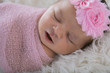 Newborn baby in pink swaddle - 242521068