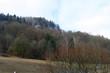 Wanderweg von Unterleinleiter nach Veilbronn - 242527046