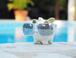 piggy pig in sunglasses beside the swimming pool.