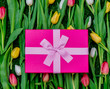 Beautiful pink gift box and tulips on green grass lawn