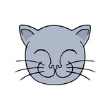 funny cat illustration