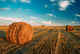 Rural Landscape Field Meadow With Hay Bales During Harvest In Su - 242588266
