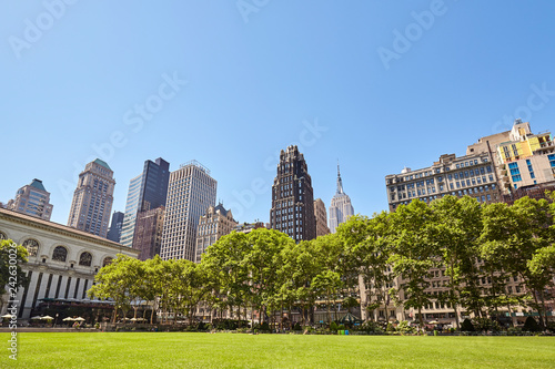 Foto Murales New York City skyline on a sunny summer day seen from the Bryant Park, USA.