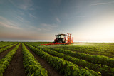 Tractor spraying a field - 242639685