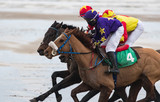 Close up action of galloping Race horses and jockeys competing on the beach