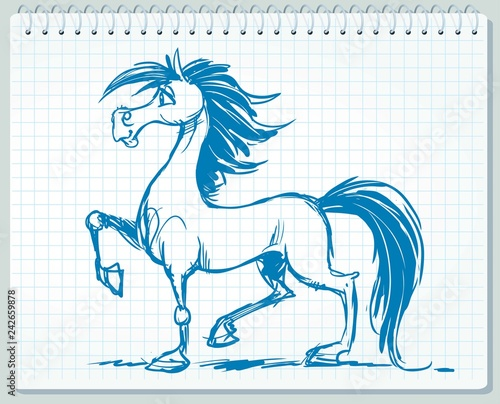 Sketch, drawing of a lovely horse