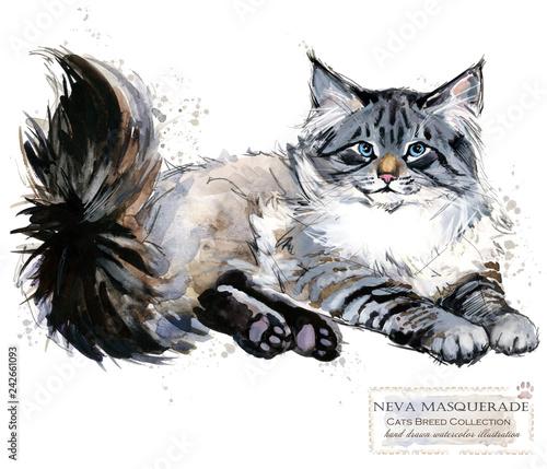 Neva Masquerade Cat. watercolor home pet illustration. Cats breeds series. domestic animal.
