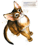 Abyssinian cat. watercolor home pet illustration. Cats breeds series. domestic animal.