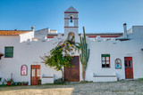 Beautiful traditional facade adorned with plants and cactus in southern Spain - 242669410
