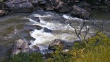 Rushing waters flowing over boulders in small river creating white splashes with rocky shoreline and grassy shoreline - 242675416