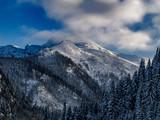 Landscape of beautiful winter.