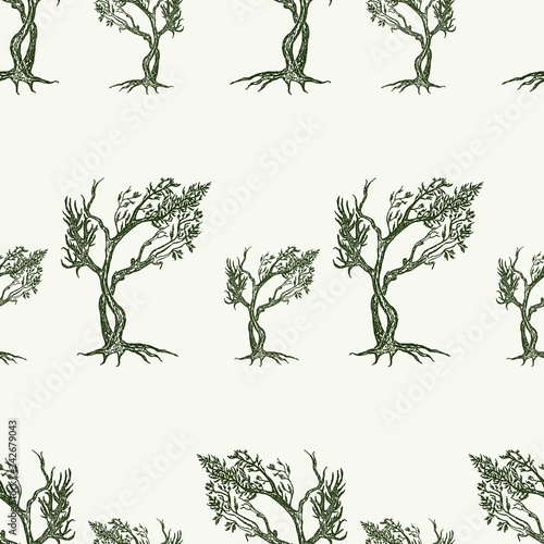 obraz PCV Seamless background of small drawn trees