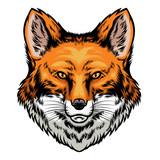 fox head hand drawn style - 242680459