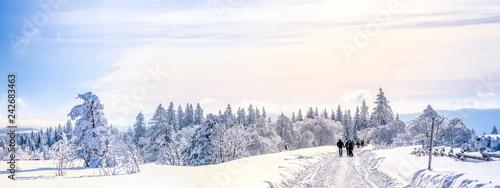 Leinwandbild Motiv Schwarzwald, Winterlandschaft
