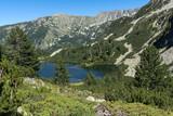 Landscape with Clear waters of Fish Vasilashko lake, Pirin Mountain, Bulgaria - 242699433