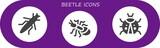 beetle icon set
