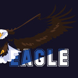 bald eagle bird flying with word - 242713850