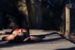 Mujer joven morena en primer plano tumbada en el camino del bosque
