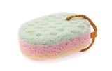 Soft sponge isolated on white background - 242762067
