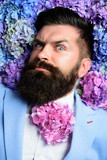 Bearded man. Summer. Mature hipster with beard. Healthy hair and skin. brutal caucasian hipster with moustache. male with hydrangea flowers. spring. womens day. Cool and sexy