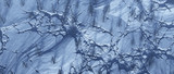 Aerial of bare trees in frozen cracked landscape. - 242817493