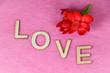 Fleur rouge et amour