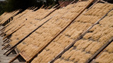noodle drying in sun at noodle factory in indonesia Bantul, Yogyakarta, Indonesia - 242819466