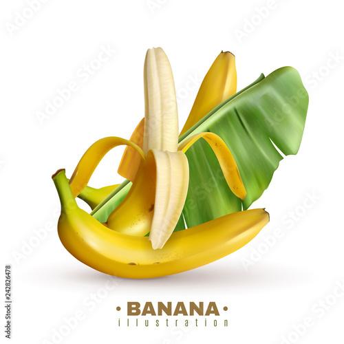 Fruit Banana Realistic Background - 242826478